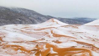 Selain Turun Salju di Gurun Sahara, Inilah Fakta Menarik Gurun Sahara!