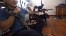 Demi Vlog, Kreator ini Bawa Ular untuk Buat Prank di Rumahnya!