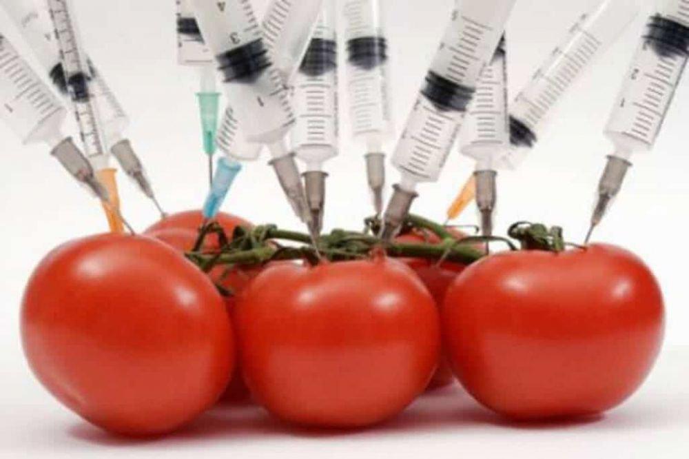 10 Makanan Manusia di Masa Depan yang Menggantikan NasiBeras YtCrash ©  YtCrash