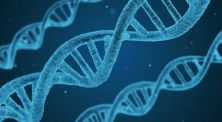 Nggak Nyangka, 4 Hal Mengerikan Ini Ada Dalam DNA Manusia!