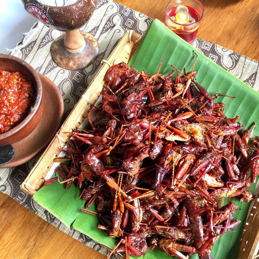 Belalang Kuliner © 2018 brilio.net
