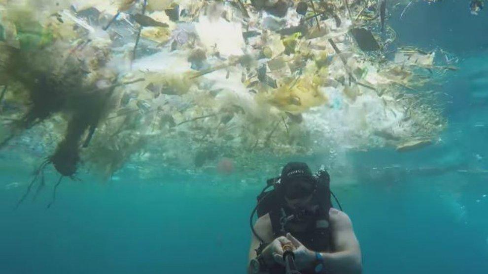 Miris! Video Viral Bule Menyelam di 'Lautan Sampah' Bali