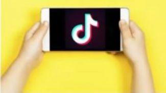 Banyak Mengadung Konten Negatif, Kominfo Blokir Aplikasi Tik Tok