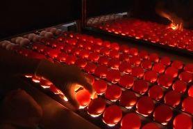 Konsumsi 1 miliar telur perhari, China bikin alat penetasan terbesar