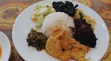 Cocok untuk diet! Diggy Kha review masakan padang khusus vegetarian