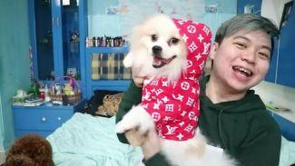 Glenn Julifer dandani anjing peliharaannya ala hypebeast!