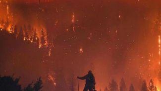 Rumah seleb Hollywood jadi korban kebakaran hutan di California
