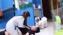 Iseng banget! Kumpulan video Glenn Julifer jahili anjing perliharaan