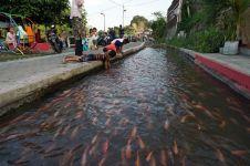 Bendung Lepen Mricanyouth aliran sungai kumuh berubah asri penuh ikan